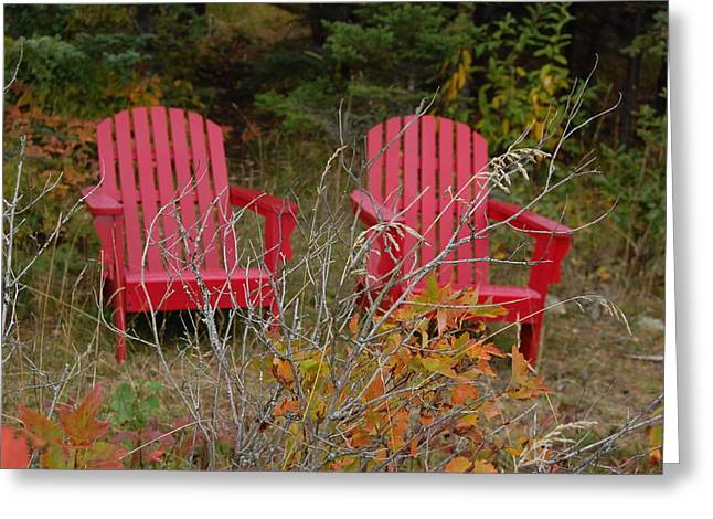 Adirondak Chair Greeting Cards - Waiting Chairs Greeting Card by Sue Olson