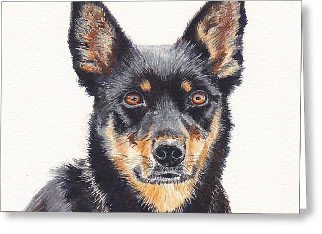 Working Dog Greeting Cards - Waiting for Instructions Greeting Card by Leonie Bell