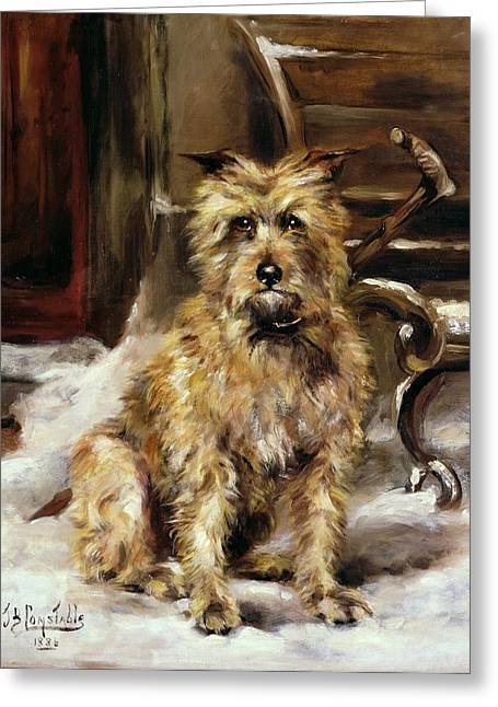 Doggy Greeting Cards - Waiting for Master   Greeting Card by Jane Bennett Constable