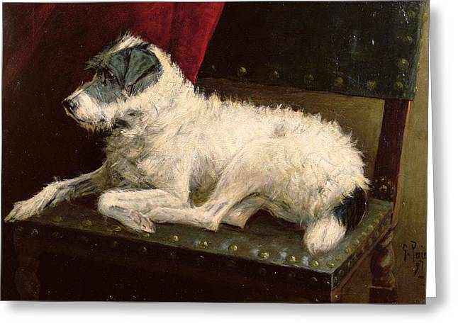 Dog Greeting Cards - Waiting for Master Greeting Card by George Paice