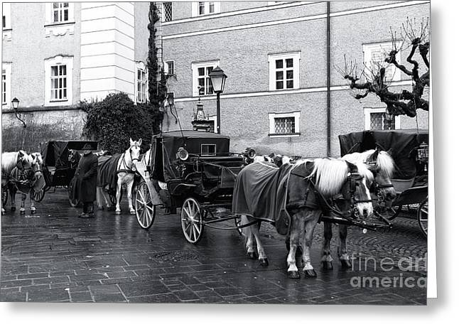 Art In Salzburg Greeting Cards - Waiting for Riders in Salzburg Greeting Card by John Rizzuto