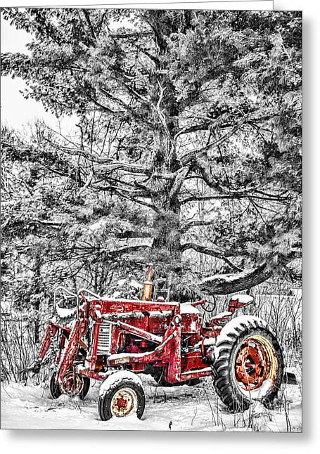Barn Yard Photographs Greeting Cards - Waiting For Spring Greeting Card by Paul Freidlund