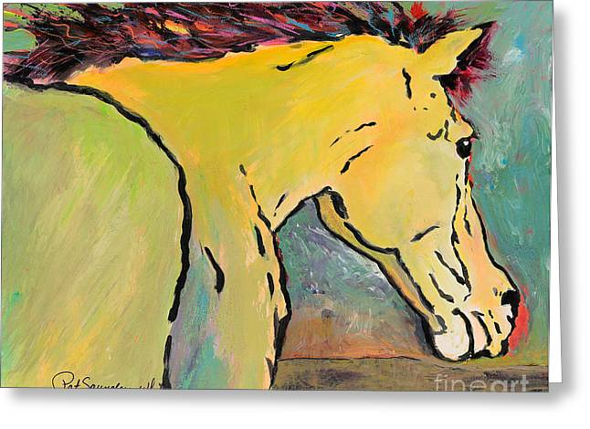 White Horses Photographs Posters Greeting Cards - Waiting For Sunrise Greeting Card by Pat Saunders-White