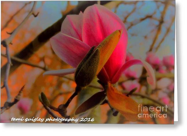 Waiting For You Greeting Card by Tami Quigley