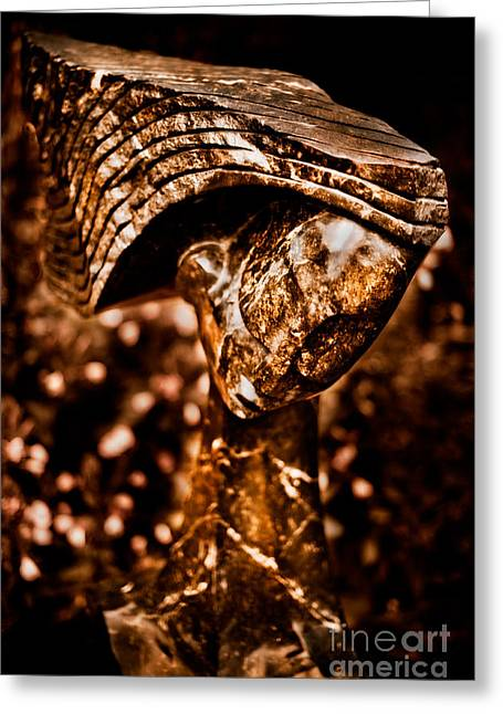 Waiting Patiently Greeting Card by Venetta Archer