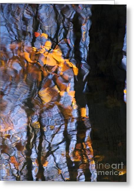 Glassy Lake Surface Greeting Cards - Waka Greeting Card by Joanne Baldaia - Printscapes