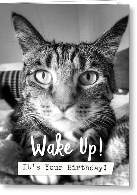 Wake Up It's Your Birthday Cat- Art By Linda Woods Greeting Card by Linda Woods