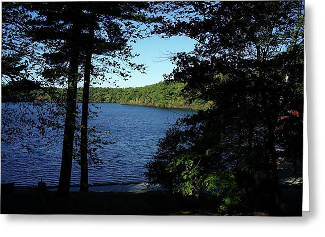 Concord Massachusetts Photographs Greeting Cards - Walden Pond End Of Summer Greeting Card by Lawrence Christopher