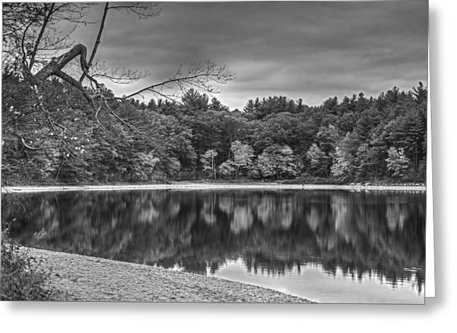 Walden Pond Fall Foliage Concord Ma Black And White Greeting Card by Toby McGuire
