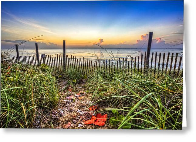 Sanddunes Greeting Cards - Walk along the Dunes Greeting Card by Debra and Dave Vanderlaan