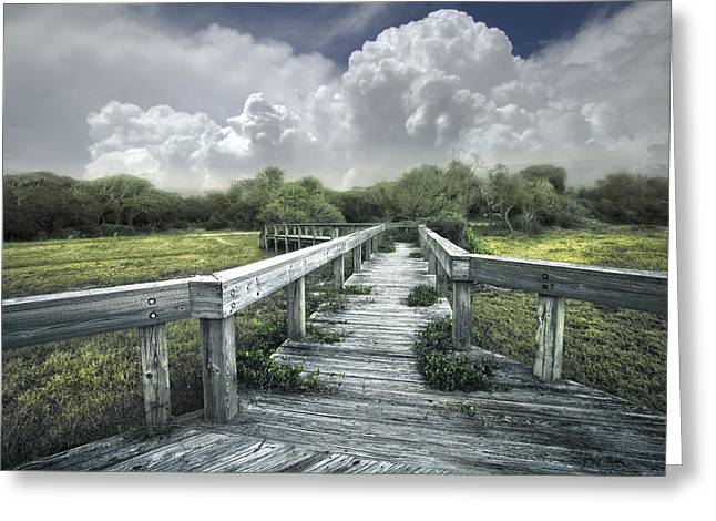 Nature Scene Greeting Cards - Walk into a Dream Greeting Card by Debra and Dave Vanderlaan