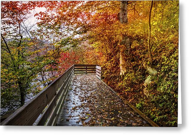 Train On Bridge Greeting Cards - Walk into Autumn Greeting Card by Debra and Dave Vanderlaan