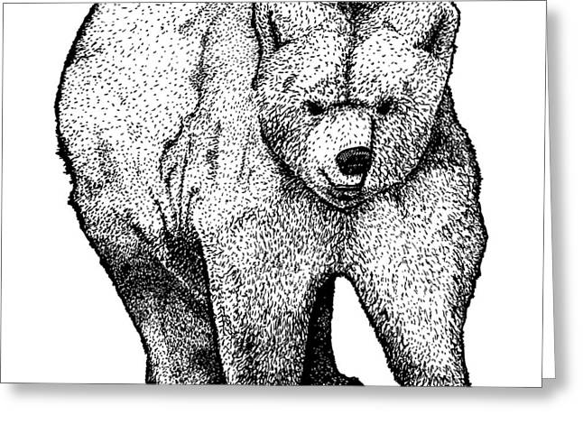 Wild Life Drawings Greeting Cards - Walking Bear Greeting Card by Karl Addison