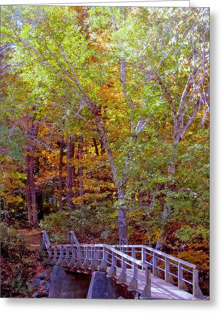 Greeting Cards - Walking Bridge Into Autumn Woods Greeting Card by Kay Novy
