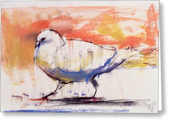 Walking Dove Greeting Card by Mark Adlington