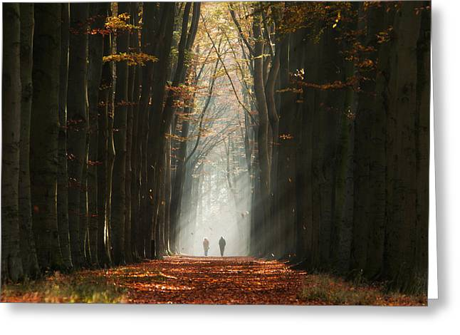 Walking Into The Light Greeting Card by Martin Podt