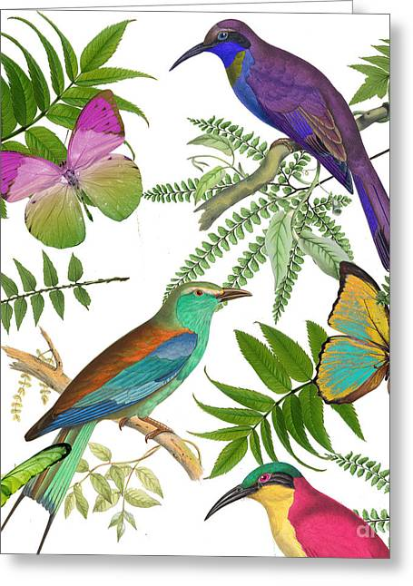 Forest Bird Greeting Cards - Walking On Air I Greeting Card by Mindy Sommers