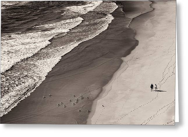 Sea Bird Greeting Cards - Walking On The Beach Greeting Card by Francesco Caso