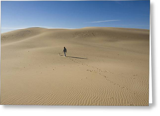 Dog Walking Digital Art Greeting Cards - Walking on the Sand Greeting Card by Tara Lynn