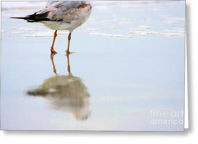 Land Sea And Sky Series Walking On Water Greeting Card by Angela Rath
