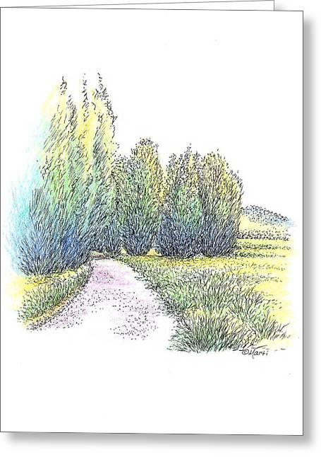 Green And Yellow Greeting Cards - Walking Path Greeting Card by Marti Gamba