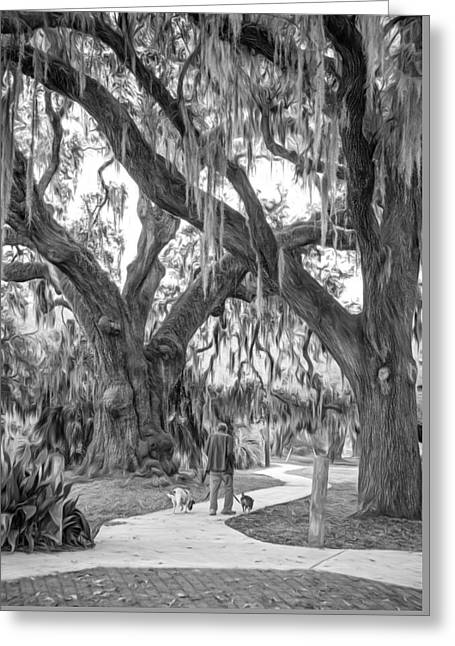 Walking The Dogs In New Orleans - Paint Bw Greeting Card by Steve Harrington