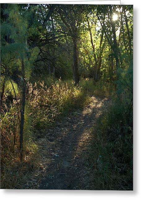 Jordan Trail Greeting Cards - Walking Towards the Sun Greeting Card by David King