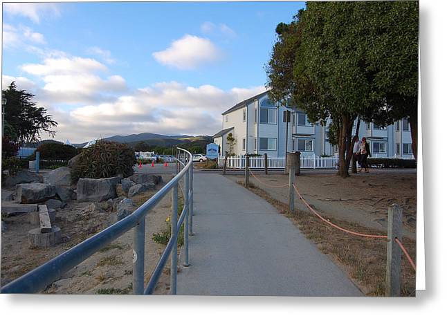 Carolyn Donnell Greeting Cards - Walkway from Pillar Point Harbor Greeting Card by Carolyn Donnell