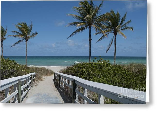 Seacoast Greeting Cards - Walkway to the Beach Greeting Card by Juli Scalzi