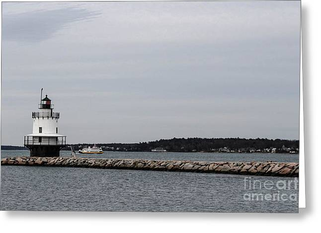 Maine Spring Greeting Cards - Walkway Greeting Card by Victory  Designs