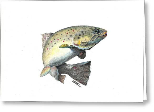 Fishing Rods Drawings Greeting Cards - Wallace Brantley Fishing Series Mr. T Greeting Card by Sharon Blanchard