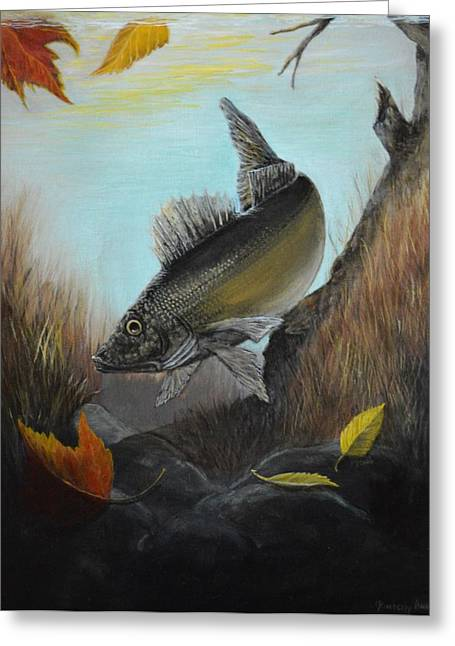 Pastimes Greeting Cards - Walleye Fall 1 Greeting Card by Kimberly Benedict