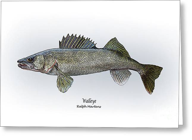 Angling Drawings Greeting Cards - Walleye Greeting Card by Ralph Martens