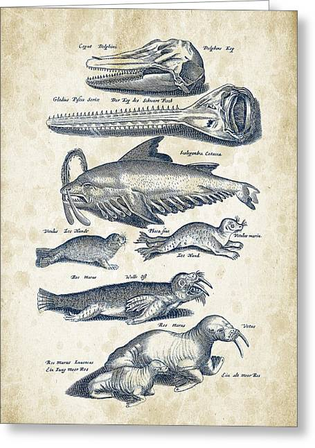 Dolphin Greeting Cards - Walrus And Dolphins Historiae Naturalis 08 - 1657 - 43 Greeting Card by Aged Pixel