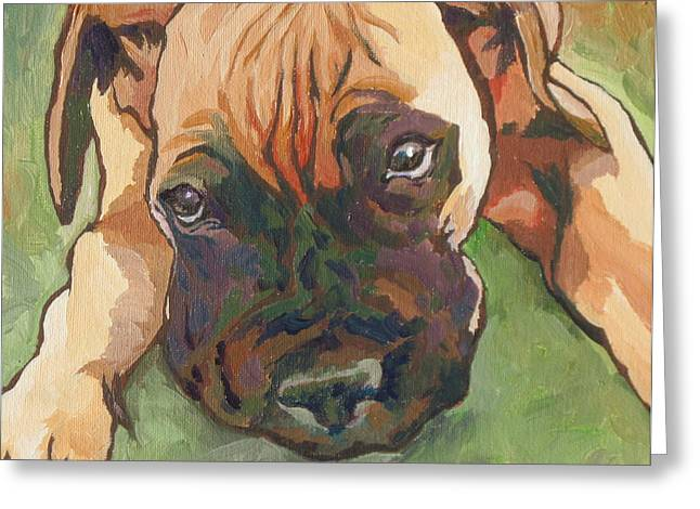 Sad Eyes Greeting Cards - Wanna Play Greeting Card by Sandy Tracey