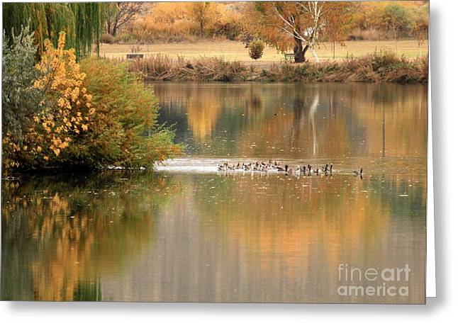 Warm Autumn River Greeting Card by Carol Groenen