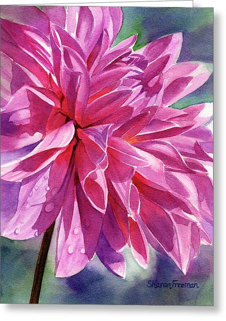 Violet Art Greeting Cards - Warm Red-Violet Dahlia Greeting Card by Sharon Freeman
