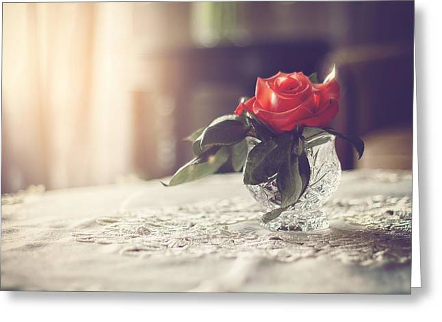 Marcin Greeting Cards - Warmth of a Rose Greeting Card by Marcin and Dawid Witukiewicz