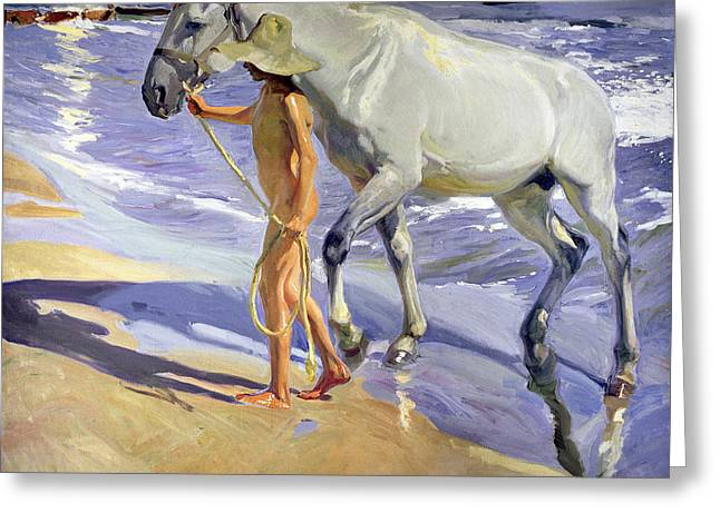 Rope Greeting Cards - Washing the Horse Greeting Card by Joaquin Sorolla y Bastida