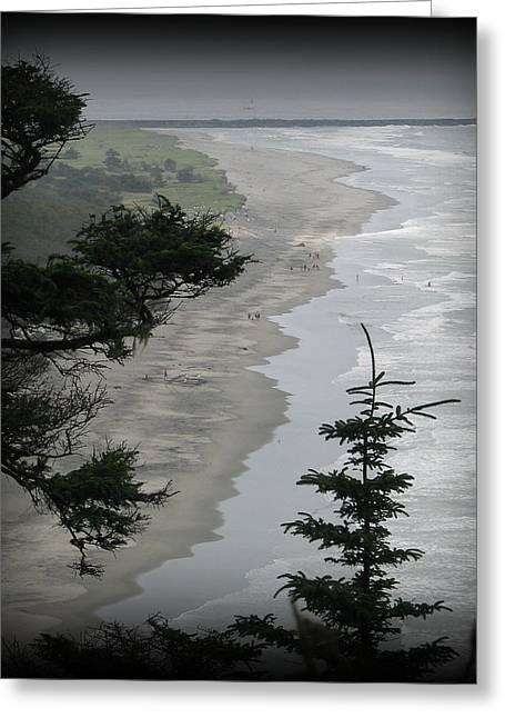 Beach Photos Greeting Cards - Washington Coast Greeting Card by Mg Rhoades
