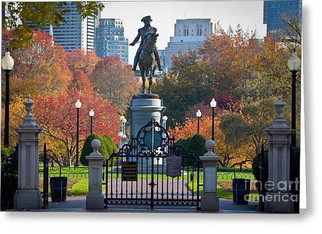 Urban Garden Greeting Cards - Washington statue in Autumn Greeting Card by Susan Cole Kelly