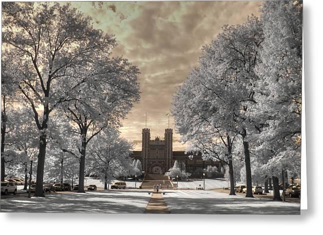 Infared Photography Greeting Cards - Washington University Greeting Card by Jane Linders