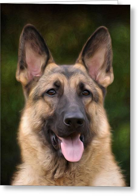 Sandy Keeton Photography Greeting Cards - Watchful Greeting Card by Sandy Keeton