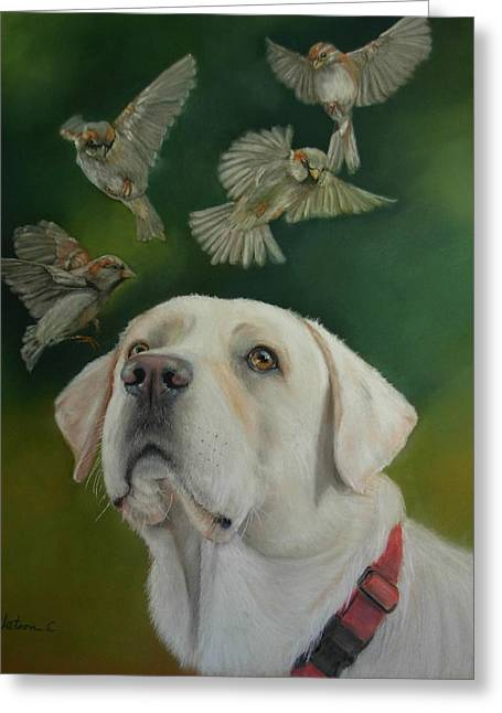 Labradors Pastels Greeting Cards - Watching Birds Greeting Card by Ceci Watson