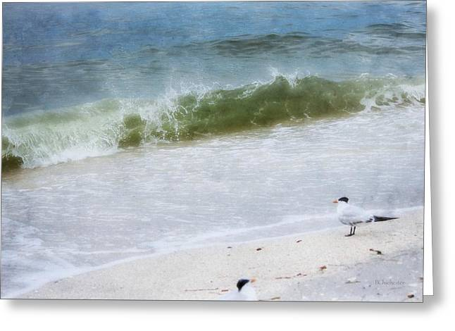 Watching Waves Crest And Break Greeting Card by Barbara Chichester