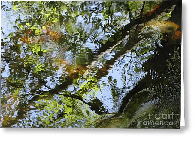 Glassy Lake Surface Greeting Cards - Water Abstract 10 Greeting Card by Joanne Baldaia - Printscapes