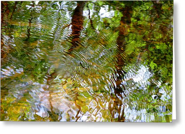 Glassy Lake Surface Greeting Cards - Water Abstract 18 Greeting Card by Joanne Baldaia - Printscapes