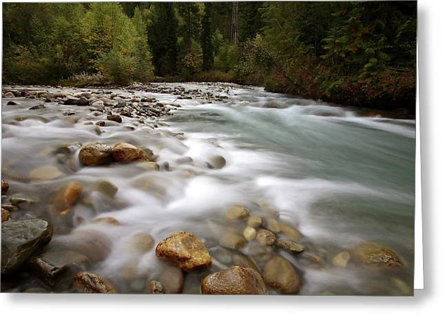 Water Flowing Greeting Cards - Water flow along Small Creek in beautiful British Columbia Greeting Card by Mark Duffy