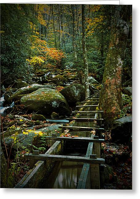 Alfred Reagan Greeting Cards - Water Flume in Autumn by the Roaring Fork Stream at Alfred Reagans Tub Mill Greeting Card by Randall Nyhof
