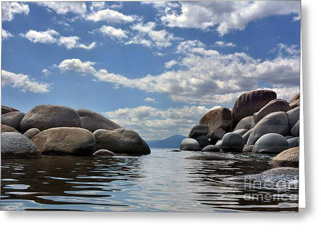 Nature Greeting Cards - Water Level Greeting Card by Dan Holm